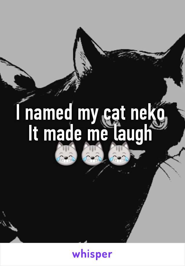 I named my cat neko  It made me laugh  😹😹😹