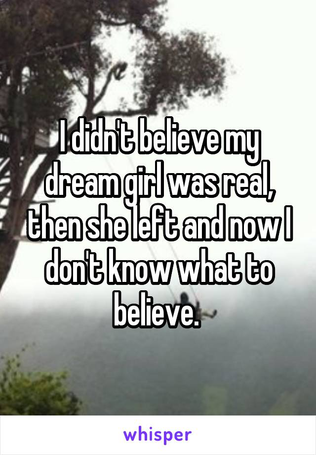 I didn't believe my dream girl was real, then she left and now I don't know what to believe.