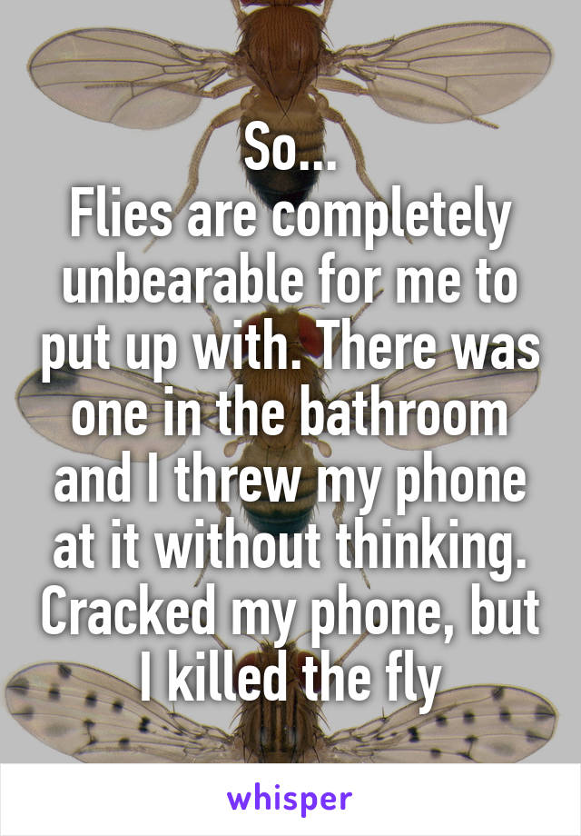 So... Flies are completely unbearable for me to put up with. There was one in the bathroom and I threw my phone at it without thinking. Cracked my phone, but I killed the fly