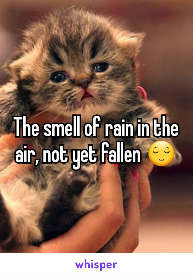 The smell of rain in the air, not yet fallen 😌
