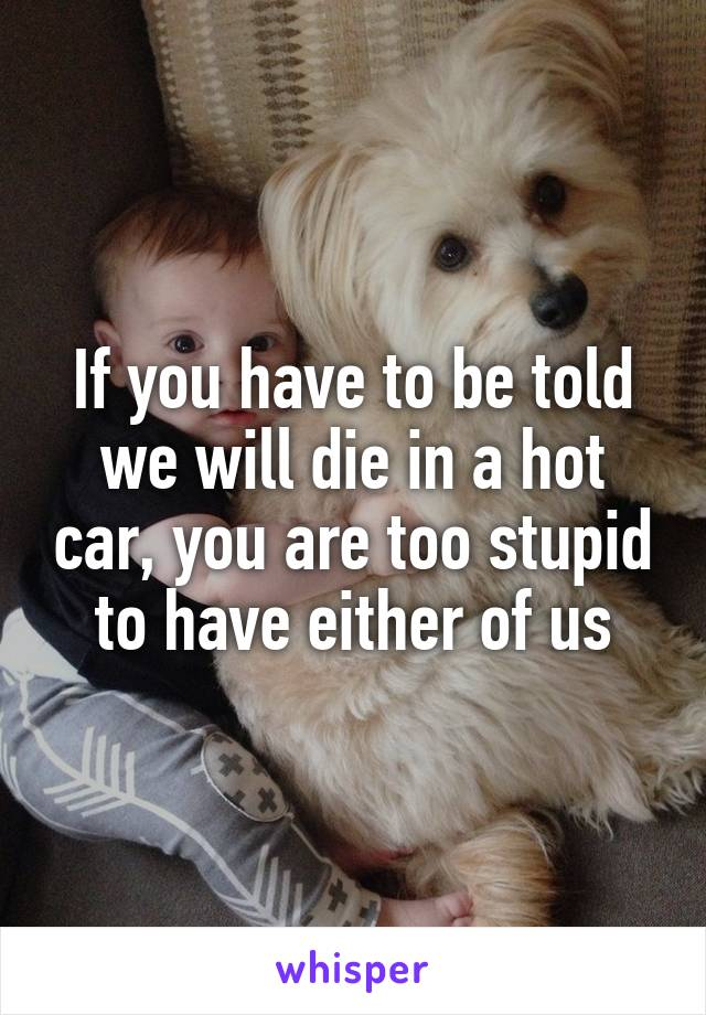 If you have to be told we will die in a hot car, you are too stupid to have either of us