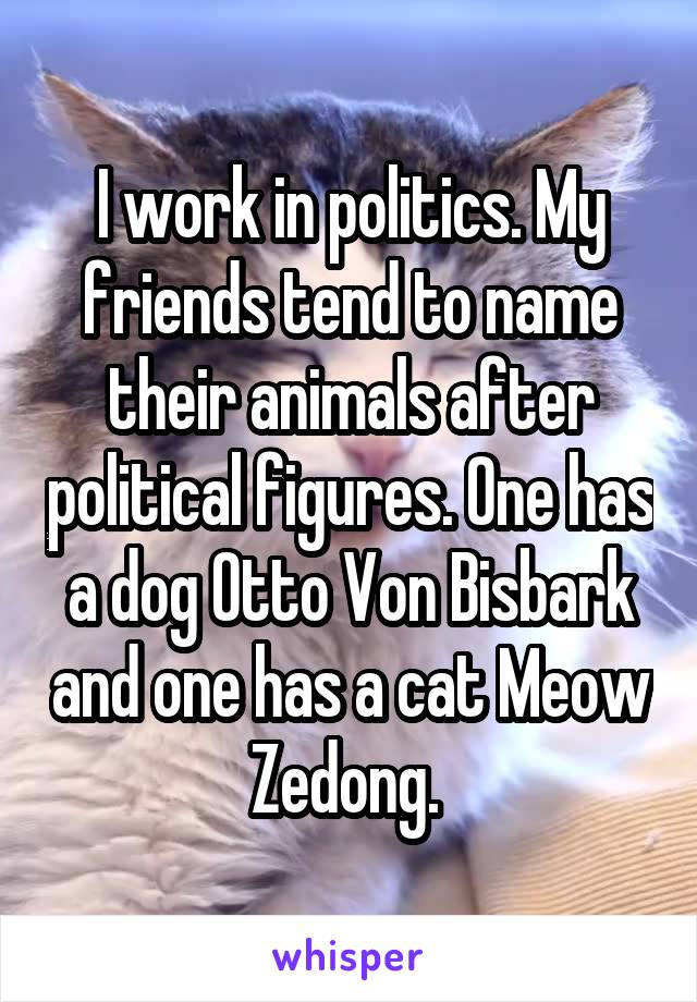 I work in politics. My friends tend to name their animals after political figures. One has a dog Otto Von Bisbark and one has a cat Meow Zedong.