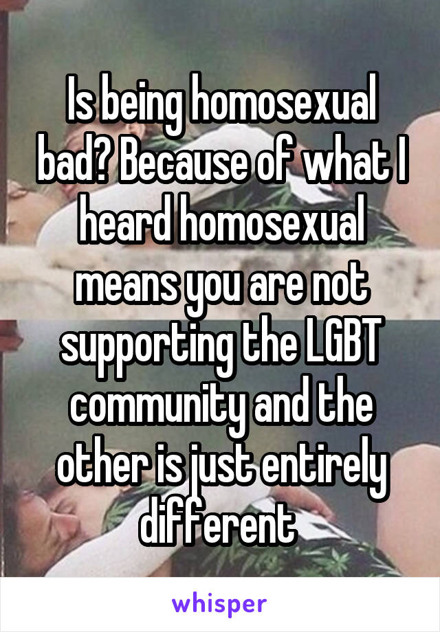 Is being homosexual bad? Because of what I heard homosexual means you are not supporting the LGBT community and the other is just entirely different