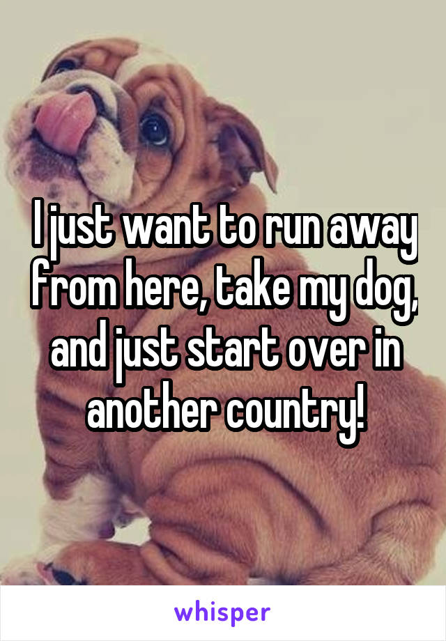 I just want to run away from here, take my dog, and just start over in another country!
