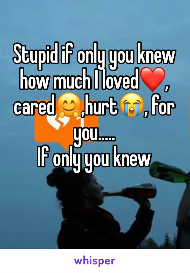 Stupid if only you knew how much I loved❤️, cared🤗,hurt😭, for you..... If only you knew