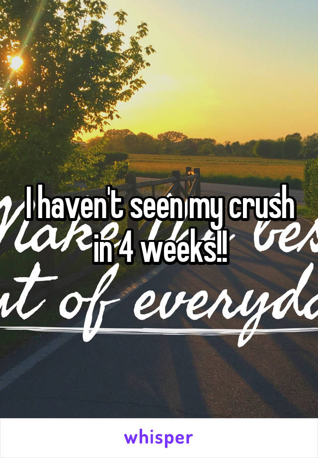 I haven't seen my crush in 4 weeks!!