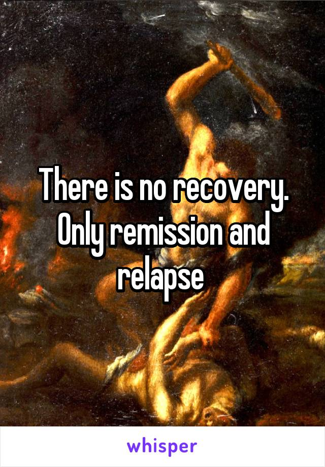 There is no recovery. Only remission and relapse