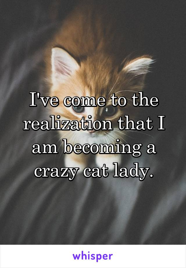 I've come to the realization that I am becoming a crazy cat lady.