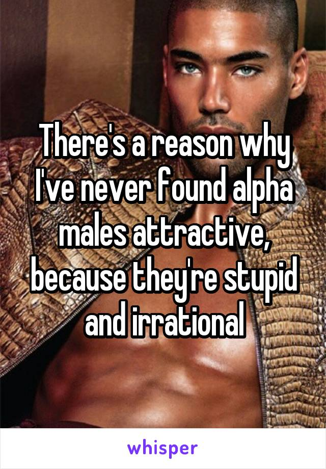 There's a reason why I've never found alpha males attractive, because they're stupid and irrational