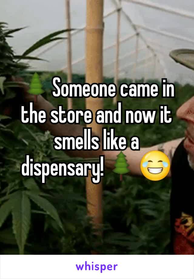🌲Someone came in the store and now it smells like a dispensary!🌲😂