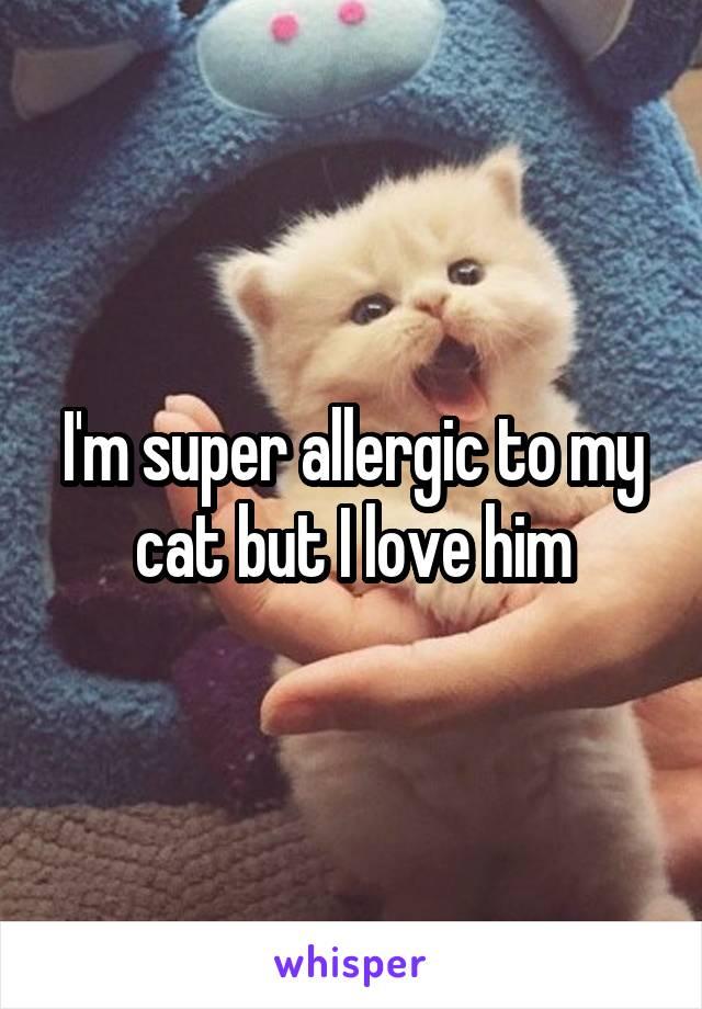 I'm super allergic to my cat but I love him