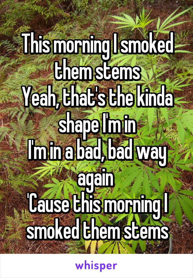 This morning I smoked them stems Yeah, that's the kinda shape I'm in I'm in a bad, bad way again  'Cause this morning I smoked them stems