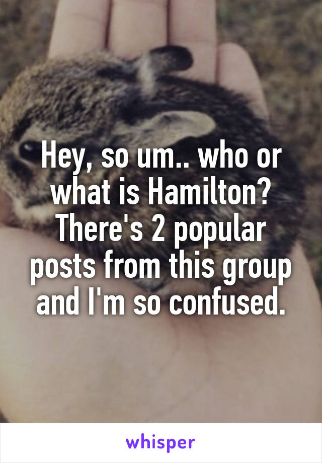 Hey, so um.. who or what is Hamilton? There's 2 popular posts from this group and I'm so confused.