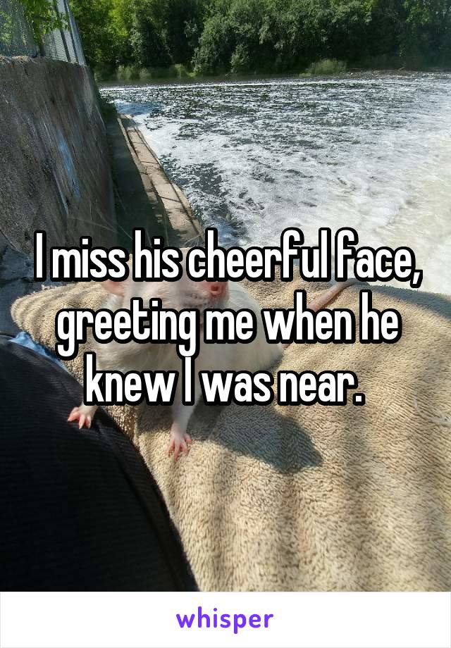 I miss his cheerful face, greeting me when he knew I was near.