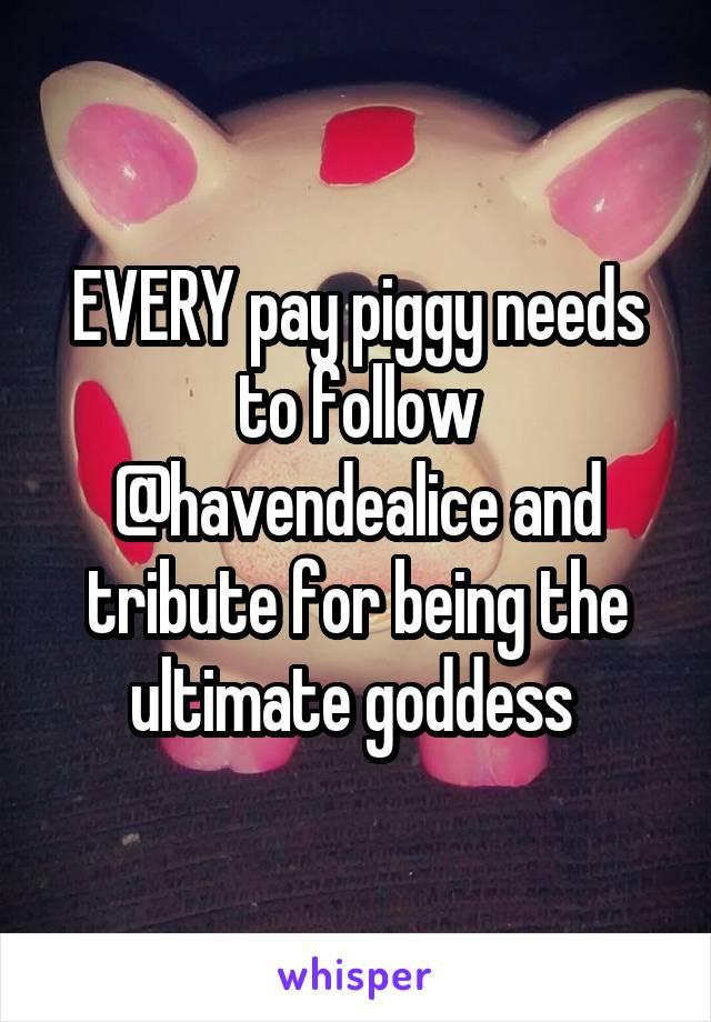 EVERY pay piggy needs to follow @havendealice and tribute for being the ultimate goddess