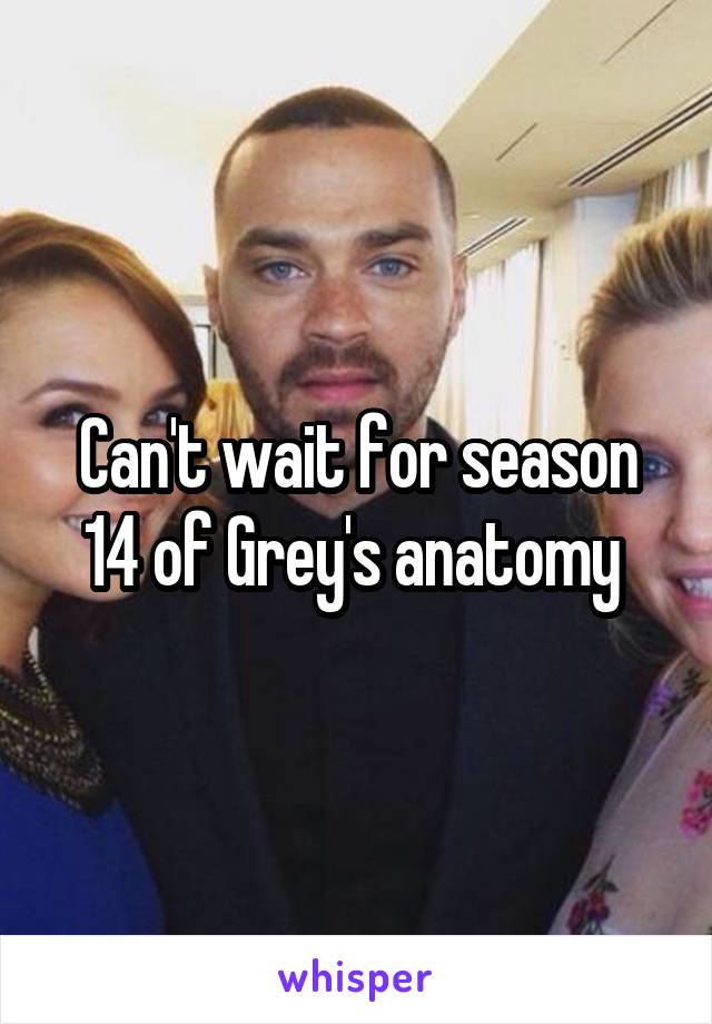 Can't wait for season 14 of Grey's anatomy