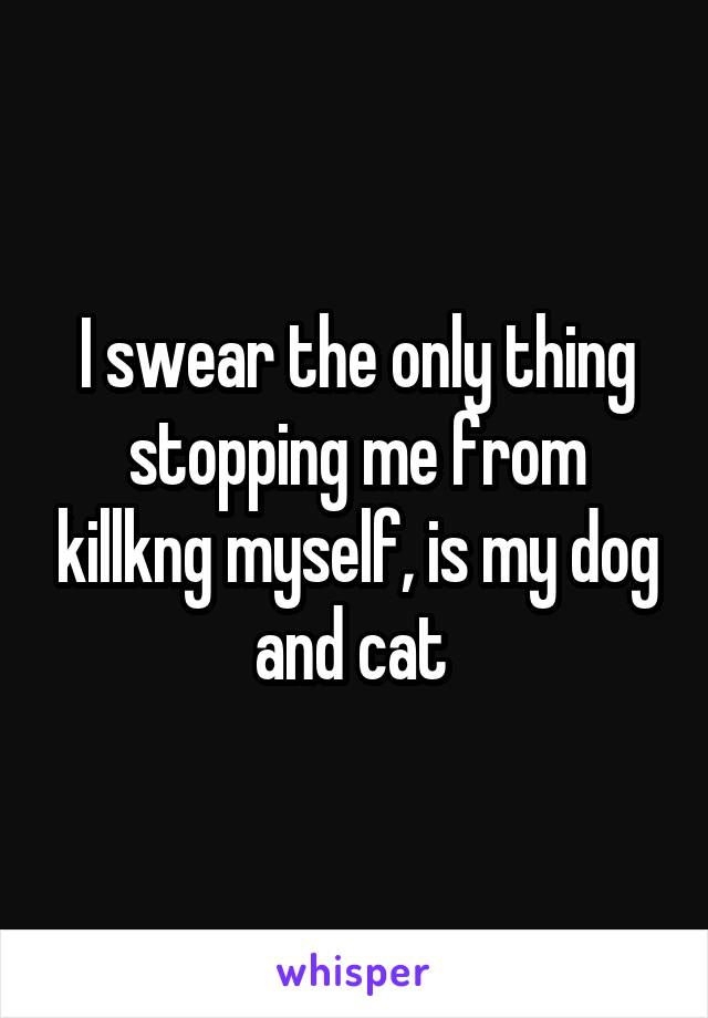 I swear the only thing stopping me from killkng myself, is my dog and cat