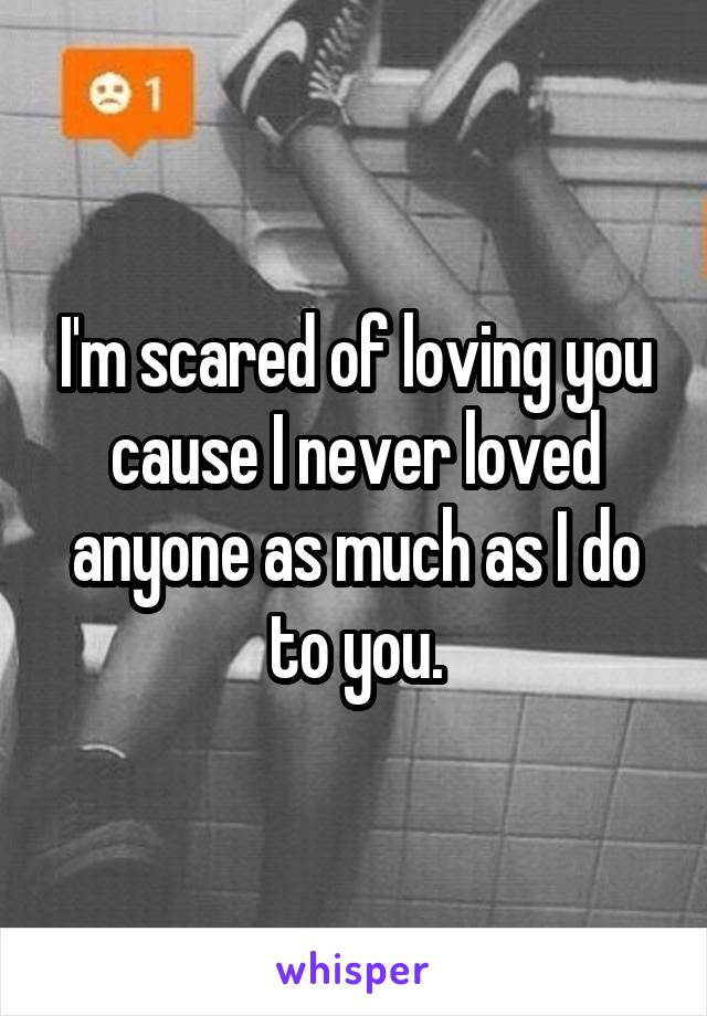 I'm scared of loving you cause I never loved anyone as much as I do to you.