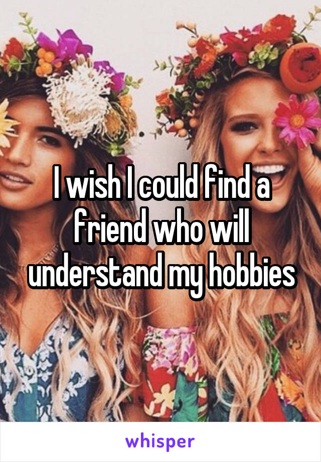 I wish I could find a friend who will understand my hobbies