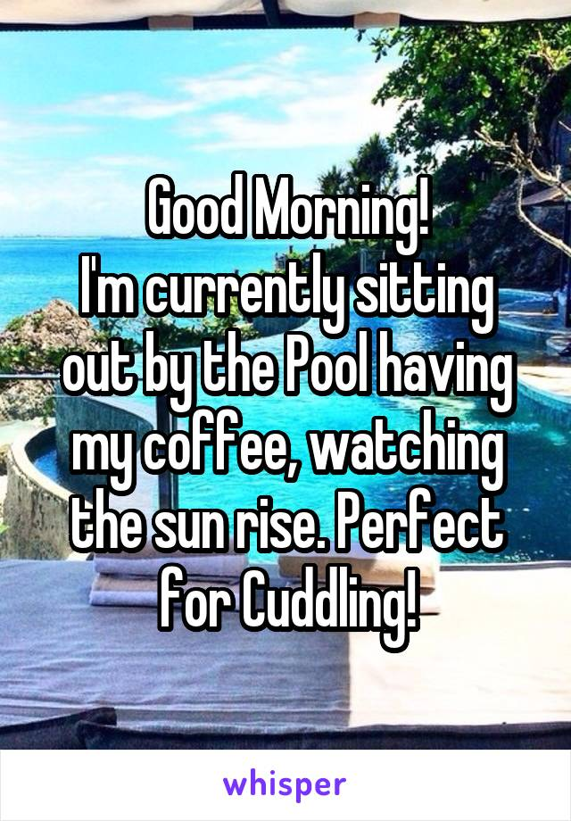 Good Morning! I'm currently sitting out by the Pool having my coffee, watching the sun rise. Perfect for Cuddling!