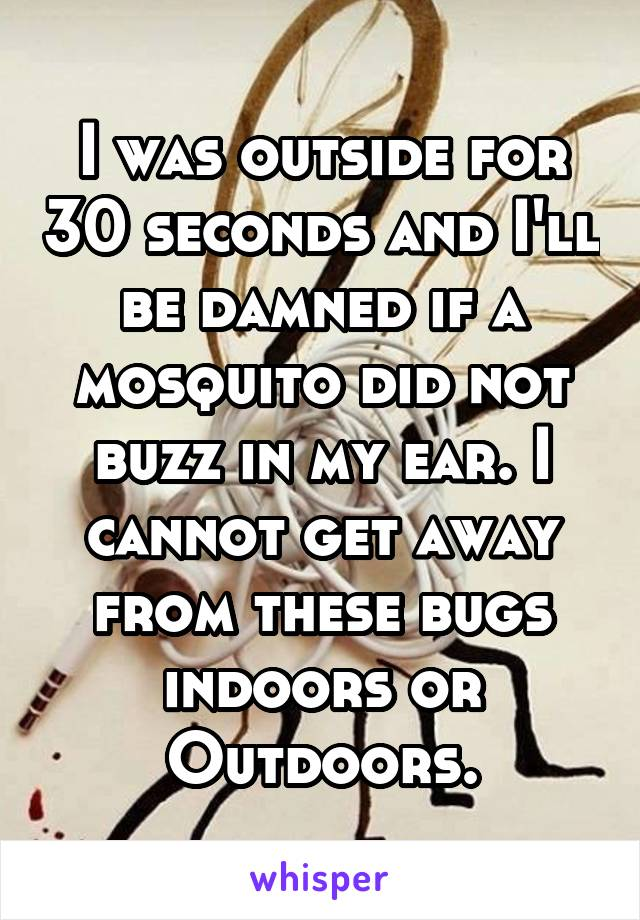 I was outside for 30 seconds and I'll be damned if a mosquito did not buzz in my ear. I cannot get away from these bugs indoors or Outdoors.