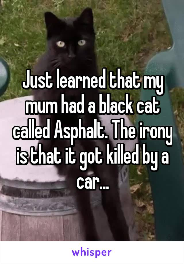 Just learned that my mum had a black cat called Asphalt. The irony is that it got killed by a car...