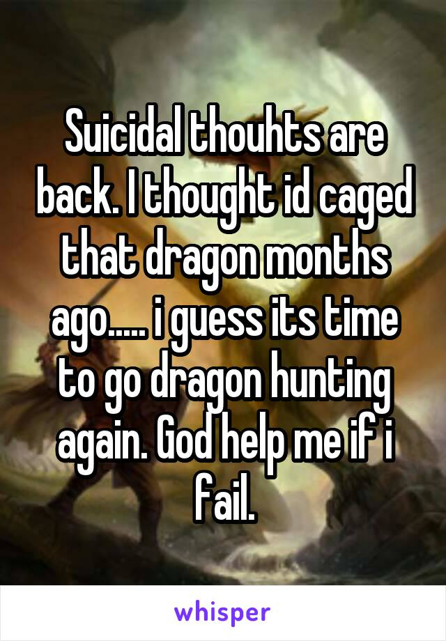 Suicidal thouhts are back. I thought id caged that dragon months ago..... i guess its time to go dragon hunting again. God help me if i fail.