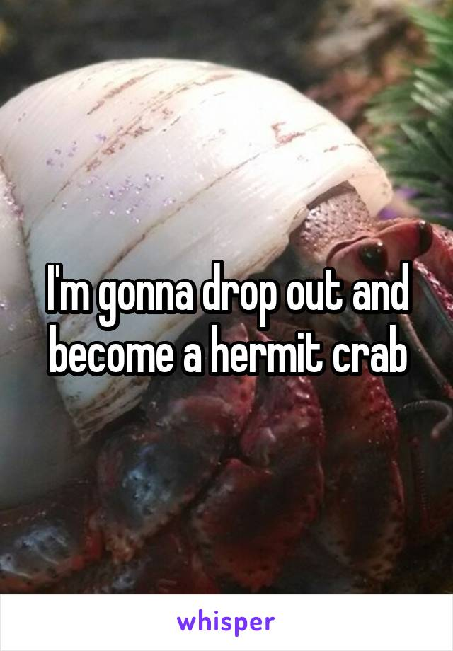 I'm gonna drop out and become a hermit crab