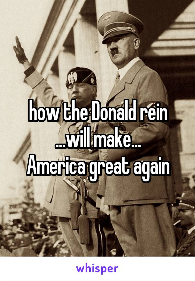 how the Donald rein ...will make... America great again