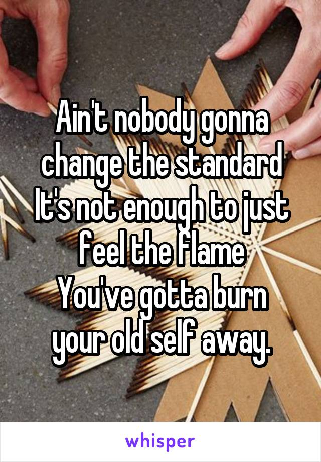 Ain't nobody gonna change the standard It's not enough to just feel the flame You've gotta burn your old self away.