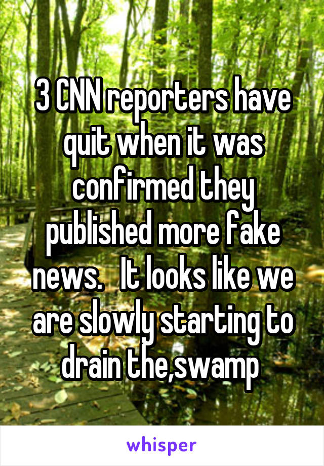 3 CNN reporters have quit when it was confirmed they published more fake news.   It looks like we are slowly starting to drain the,swamp