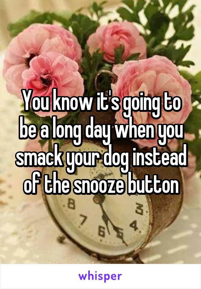 You know it's going to be a long day when you smack your dog instead of the snooze button