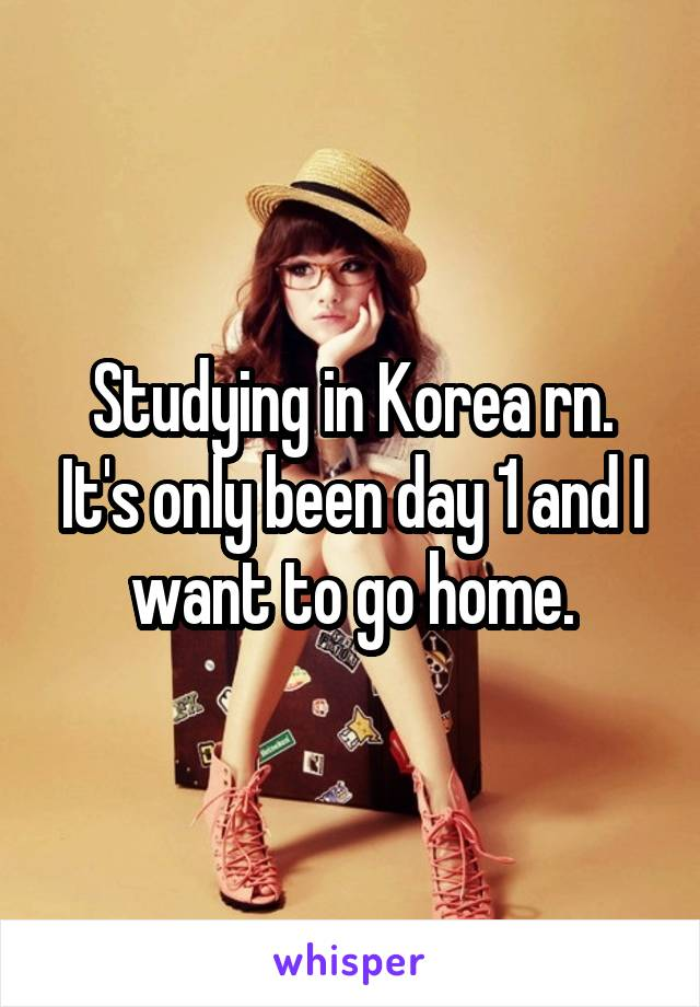 Studying in Korea rn. It's only been day 1 and I want to go home.