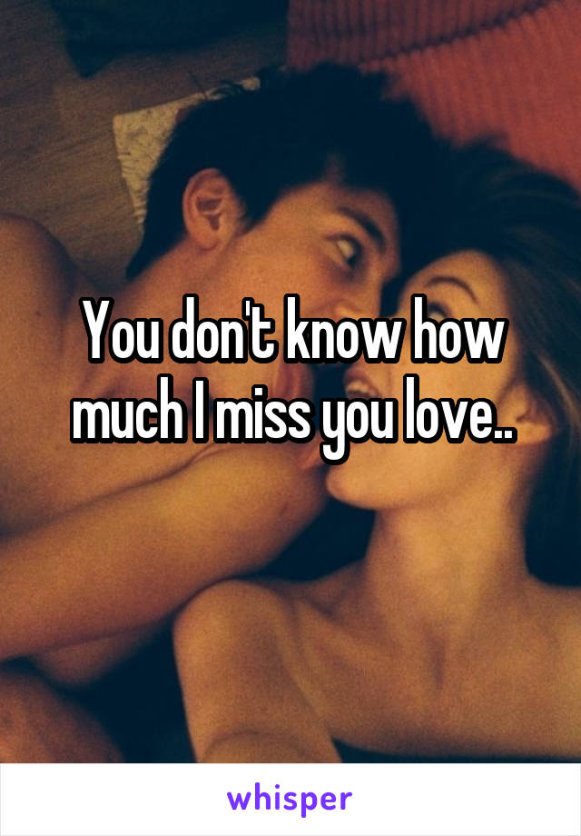 You don't know how much I miss you love..