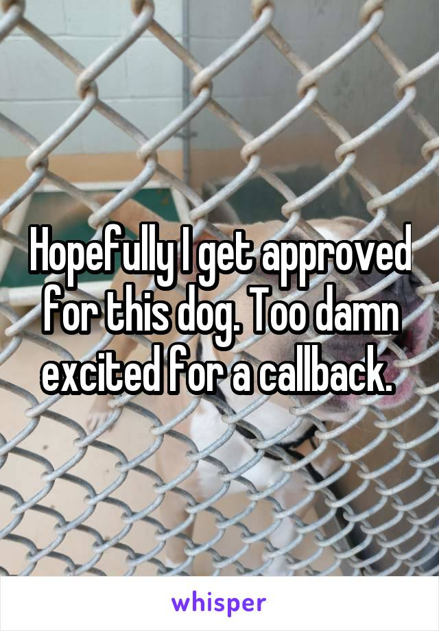Hopefully I get approved for this dog. Too damn excited for a callback.