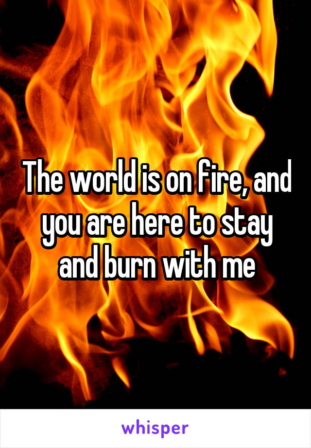 The world is on fire, and you are here to stay and burn with me