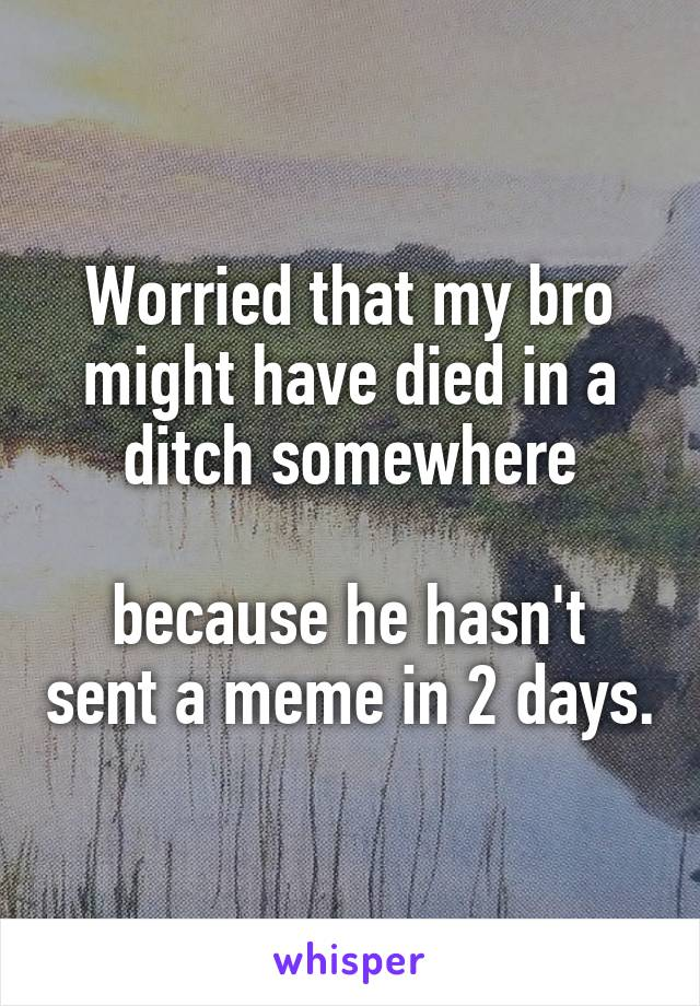 Worried that my bro might have died in a ditch somewhere  because he hasn't sent a meme in 2 days.