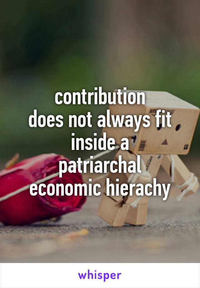 contribution does not always fit inside a patriarchal economic hierachy