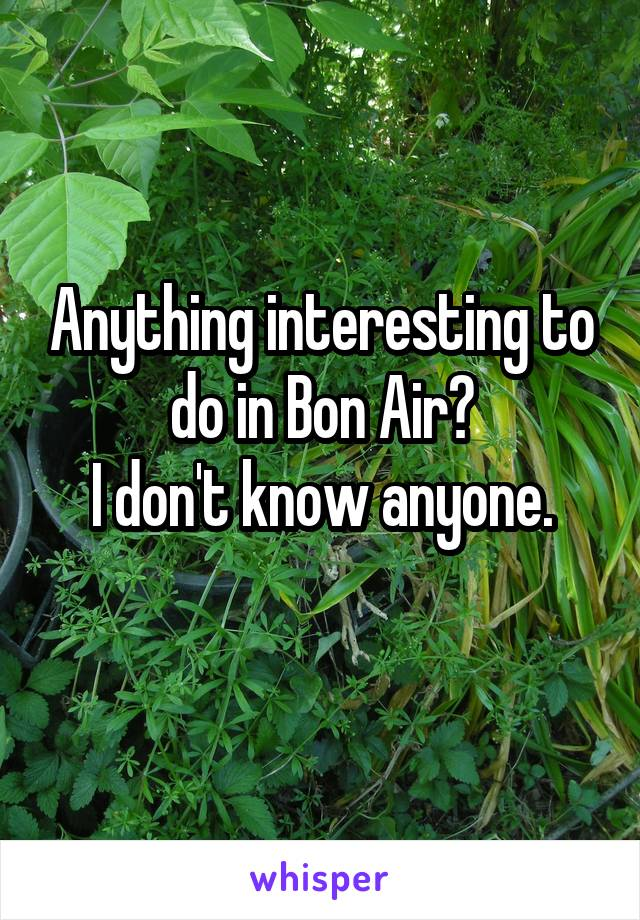 Anything interesting to do in Bon Air? I don't know anyone.