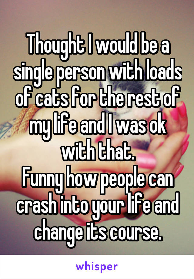 Thought I would be a single person with loads of cats for the rest of my life and I was ok with that. Funny how people can crash into your life and change its course.
