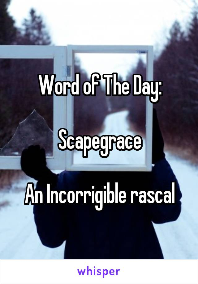 Word of The Day:  Scapegrace  An Incorrigible rascal
