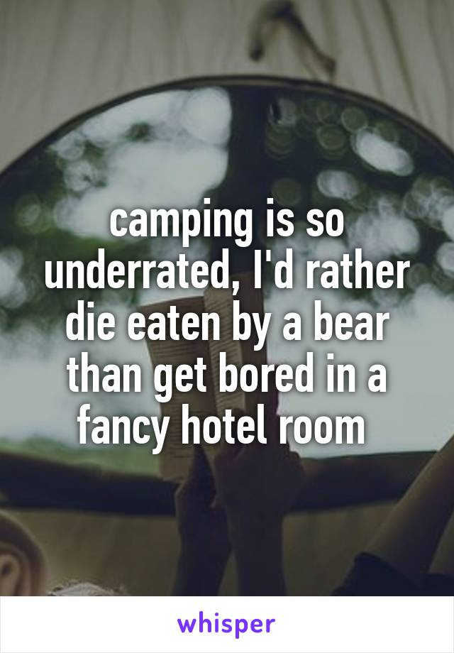 camping is so underrated, I'd rather die eaten by a bear than get bored in a fancy hotel room