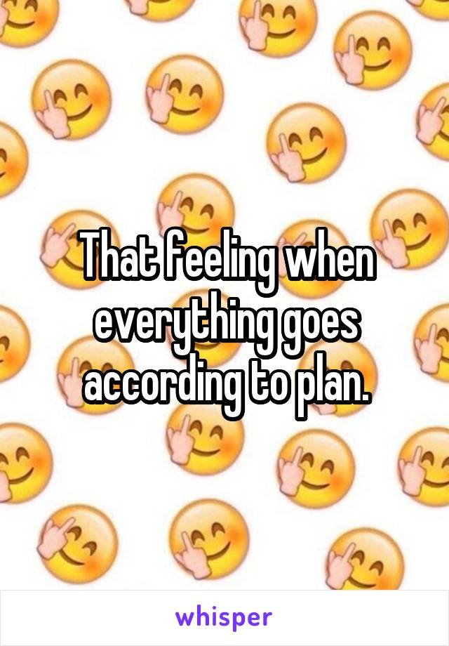 That feeling when everything goes according to plan.