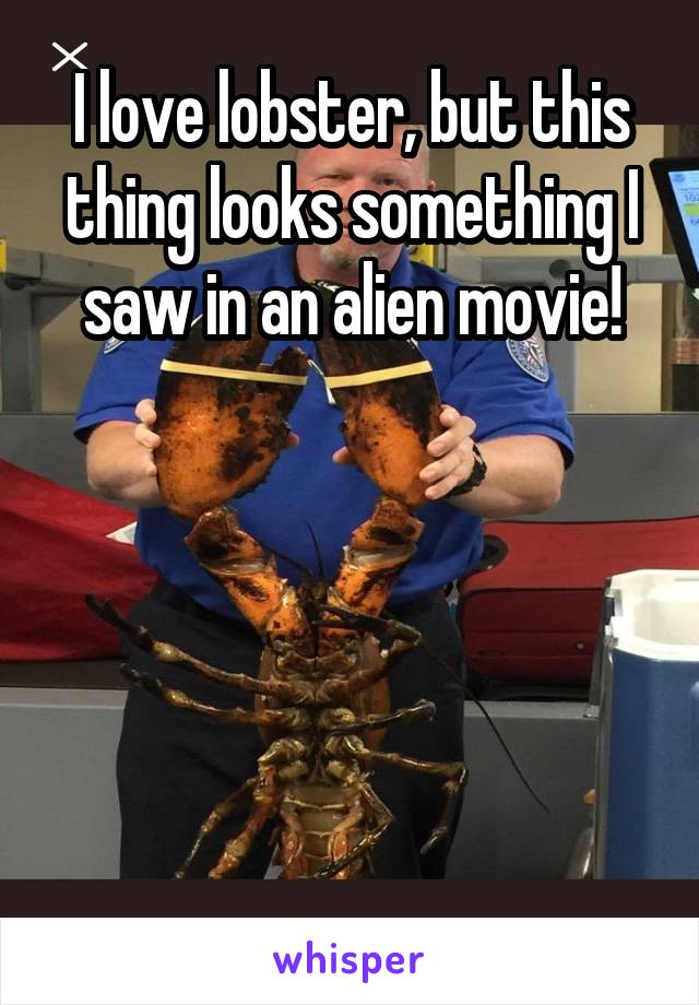 I love lobster, but this thing looks something I saw in an alien movie!