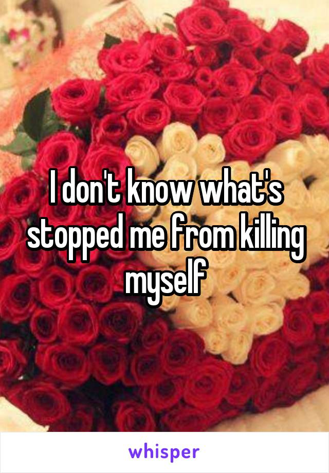 I don't know what's stopped me from killing myself