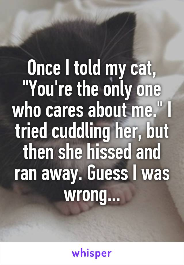"""Once I told my cat, """"You're the only one who cares about me."""" I tried cuddling her, but then she hissed and ran away. Guess I was wrong..."""