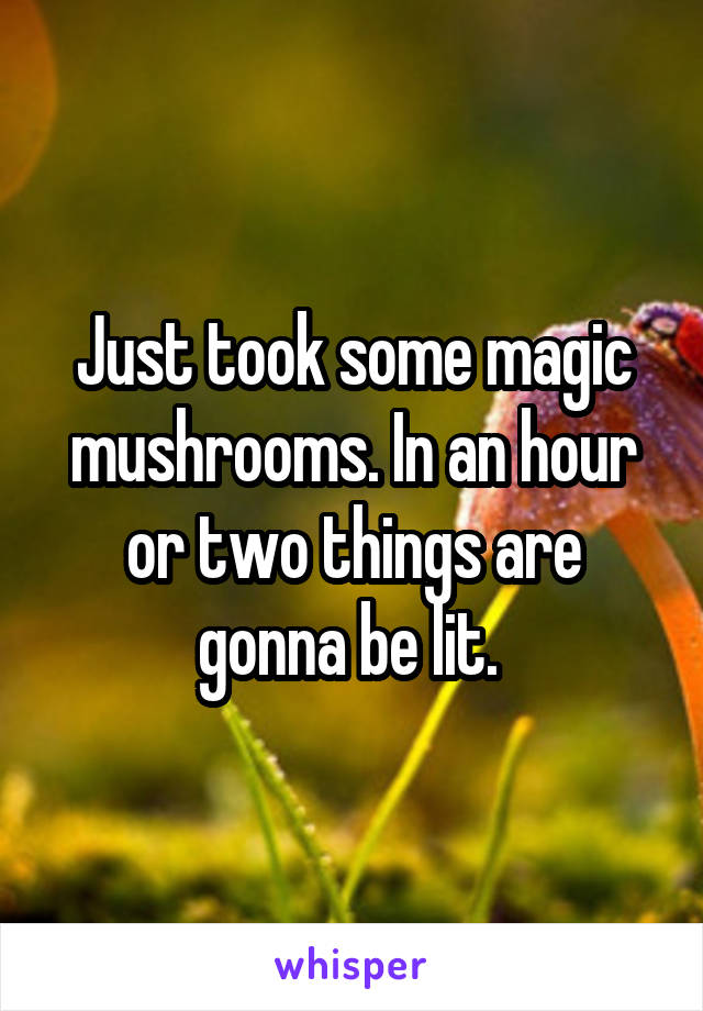 Just took some magic mushrooms. In an hour or two things are gonna be lit.
