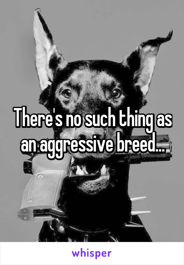 There's no such thing as an aggressive breed...