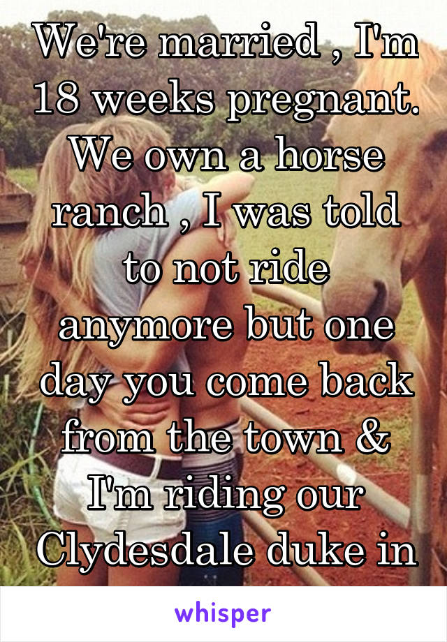 We're married , I'm 18 weeks pregnant. We own a horse ranch , I was told to not ride anymore but one day you come back from the town & I'm riding our Clydesdale duke in the pin .