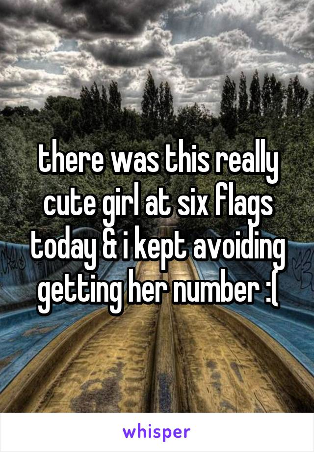 there was this really cute girl at six flags today & i kept avoiding getting her number :(
